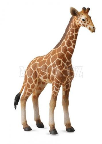 Collecta Žirafa Mládě cena od 80 Kč