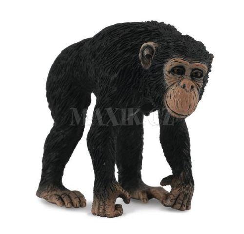Collecta Šimpanz Samice cena od 53 Kč