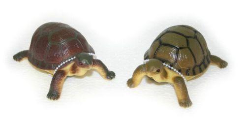 Rappa želva 12 cm cena od 37 Kč