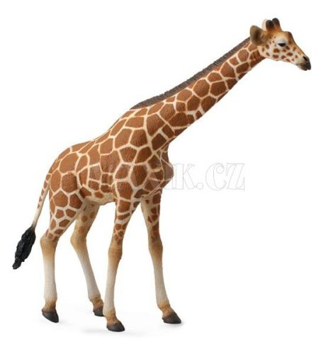 Collecta Figurky Žirafa cena od 100 Kč
