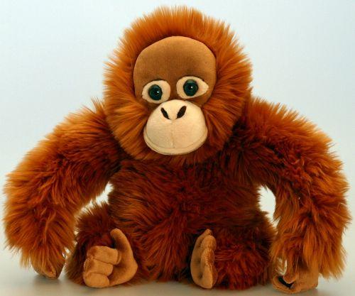 Keel Orangutan 20 cm cena od 0 Kč