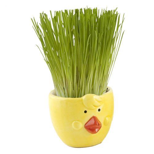 Sparkys Velikonoční kuřátko cena od 59 Kč