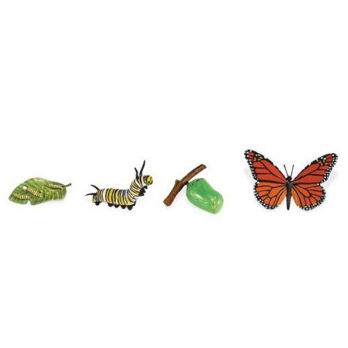 Safari Životní cyklus Motýl 622616