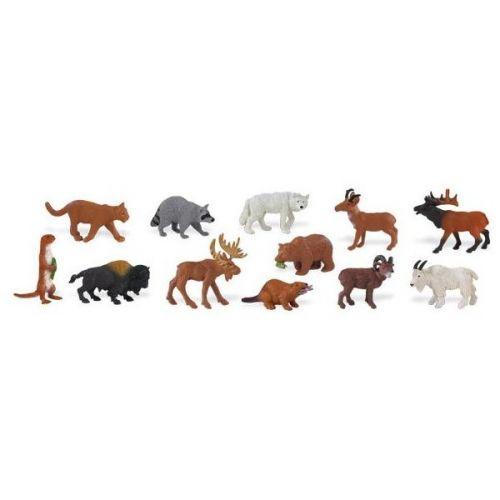 Safari Zvířata Severní Ameriky 765804