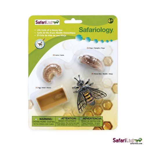Safari Životní cyklus Včela 622716