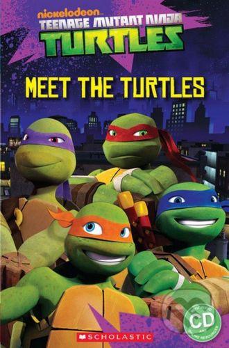 Fiona Davis: Ninja Turtles Meet the turtles! cena od 245 Kč
