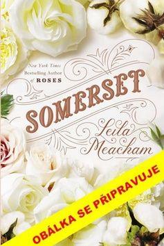 Leila Meacham: Sen o Somersetu cena od 248 Kč