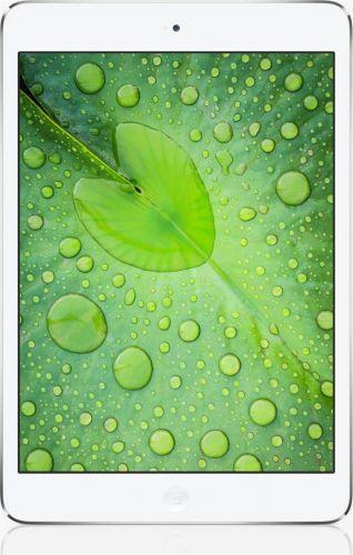 Apple ME280FD/A 32 GB cena od 0 Kč