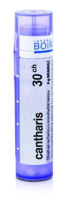 Cantharis CH30 granule 4 g cena od 72 Kč