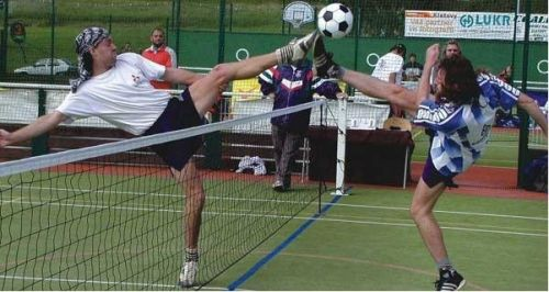 Pokorný Liga Sport 3 mm