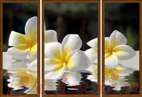 EVK květy na vodě obraz 3 díly