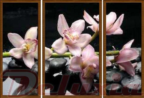 EVK orchidej růžová obraz 3 díly