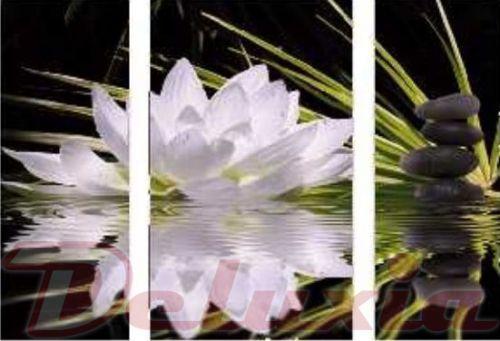EVK lotosový květ obraz 3 díly
