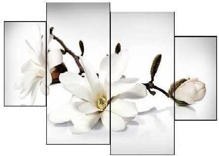EVK bílé květy obraz 4 díly