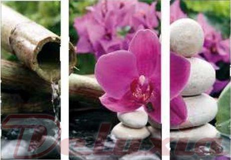 EVK orchidej obraz 3 díly