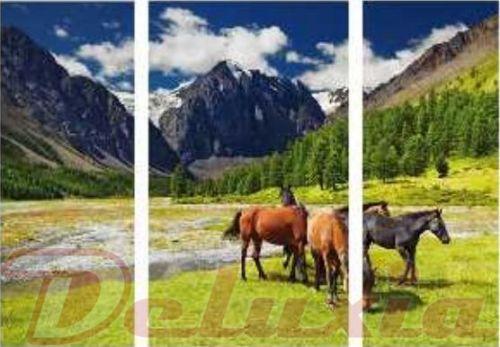 EVK koně obraz 3 díly