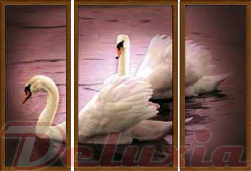EVK labutě obraz 3 díly