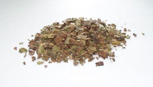 Salvia Paradise Černý rybíz list 100 g cena od 90 Kč