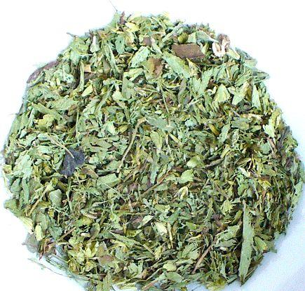 Salvia Paradise Stévie sladká list 1 kg cena od 1014 Kč