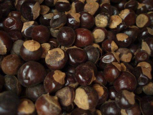 Salvia Paradise Guarana plod celý 50 g cena od 64 Kč