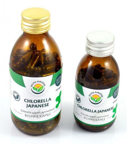 Salvia Paradise Chlorella Japanese 60 ks