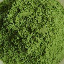 Salvia Paradise Mladý zelený ječmen 100 g
