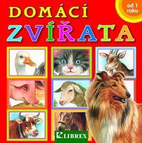 Dagmar Košková: Domácí zvířata cena od 44 Kč