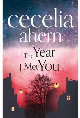 Cecelia Ahern: The Year I Met You cena od 359 Kč