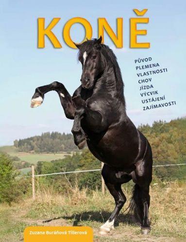 Buráňová Tillerová Zuzana: Koně - původ, plemena, vlastnosti, chov, jízda, výcvik, ustájení, zajímavosti cena od 186 Kč