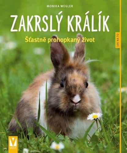 Monika Wegler: Zakrslý králík - Jak na to cena od 79 Kč