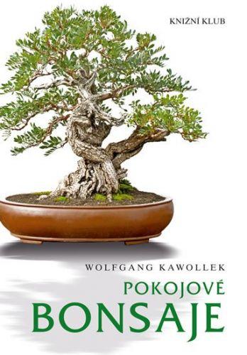 Wolfgang Kawollek: Pokojové bonsaje cena od 207 Kč