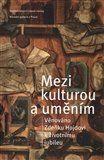 kol.: Mezi kulturou a uměním cena od 199 Kč