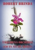 Robert Brinda: Ukradená orchidej cena od 69 Kč