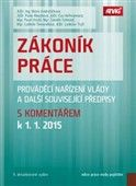 Mária Andraščíková: Zákoník práce, prováděcí nařízení vlády a další související předpisy s komentářem k 1. 1. 2015 cena od 844 Kč