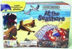 Koeppel Ruth: At the Seashore (Junior Groovies) cena od 208 Kč