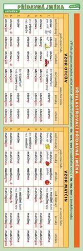 Kupka Petr: Záložka přídavná jména vzory cena od 11 Kč