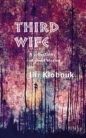 Klobouk Jiří: Third Wife: A Collection of Short Stories cena od 197 Kč