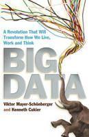 Mayer-Schonberger: Big Data cena od 233 Kč