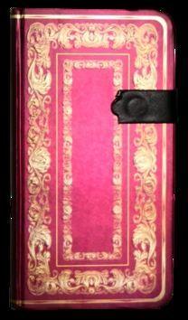 Zápisník s magnetickým klipem 85x160 mm se zlatým ornamentem cena od 107 Kč