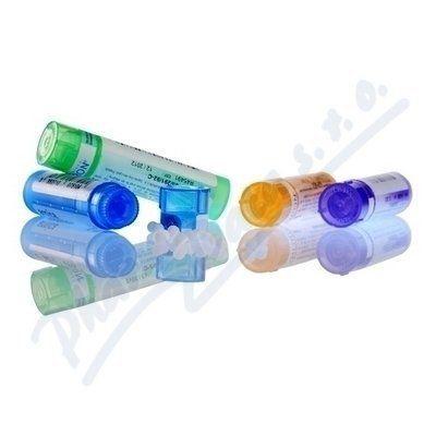 Nitricum Acidum CH200 4 g cena od 92 Kč