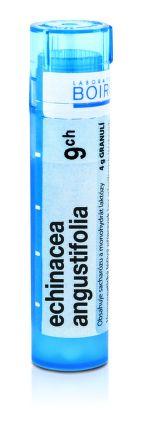 Echinacea Angustifolia CH9 granule 4 g cena od 76 Kč