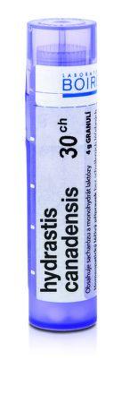 Hydrastis Canadensis CH30 granule 4 g cena od 77 Kč