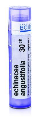 Echinacea Angustifolia CH30 granule 4 g cena od 80 Kč