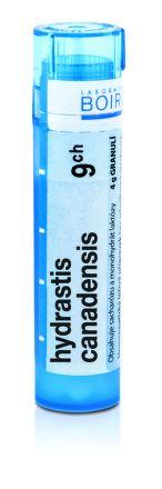 Hydrastis Canadensis CH9 granule 4 g cena od 74 Kč