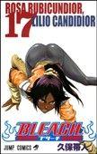 Tite Kubo: Bleach 17 cena od 126 Kč