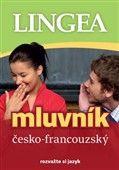 Česko-francouzský mluvník cena od 168 Kč