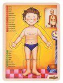 Woody výukové Anatomie, Lidské tělo 12 dílků cena od 159 Kč
