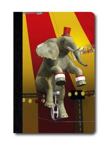 Zápisník - Úžaska - Žonglující slon cena od 0 Kč