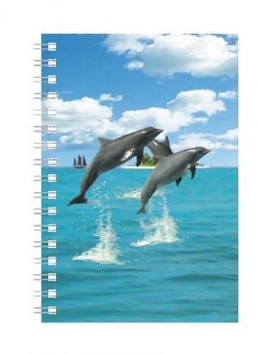 ABC Develop Deníček - Úžaska - Delfíni cena od 88 Kč