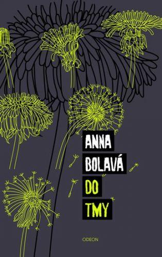 Anna Bolavá: Do tmy cena od 206 Kč